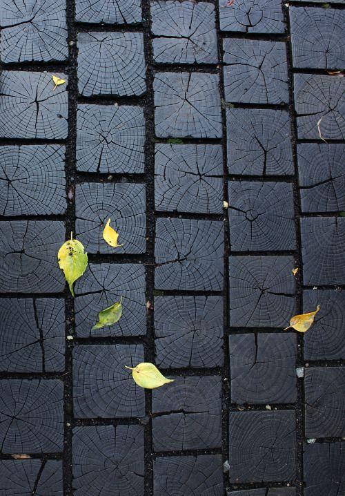 wood floor #woodfloortexture