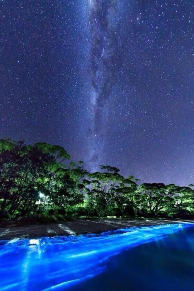 The Milky Way Over Bio Luminescent Plankton On A Beach In South Coast NSWAustraliawould Love To Holiday For 3 Months Australia Sometime