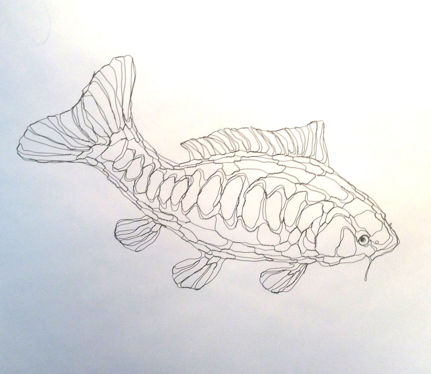 Wire Sculpture 2D Koi Carp (Pond Fish): Wire Wall Art by Elizabeth Berrien, internationally acclaimed wire sculp by WireZoo on Etsy https://www.etsy.com/listing/219457546/wire-sculpture-2d-koi-carp-pond-fish
