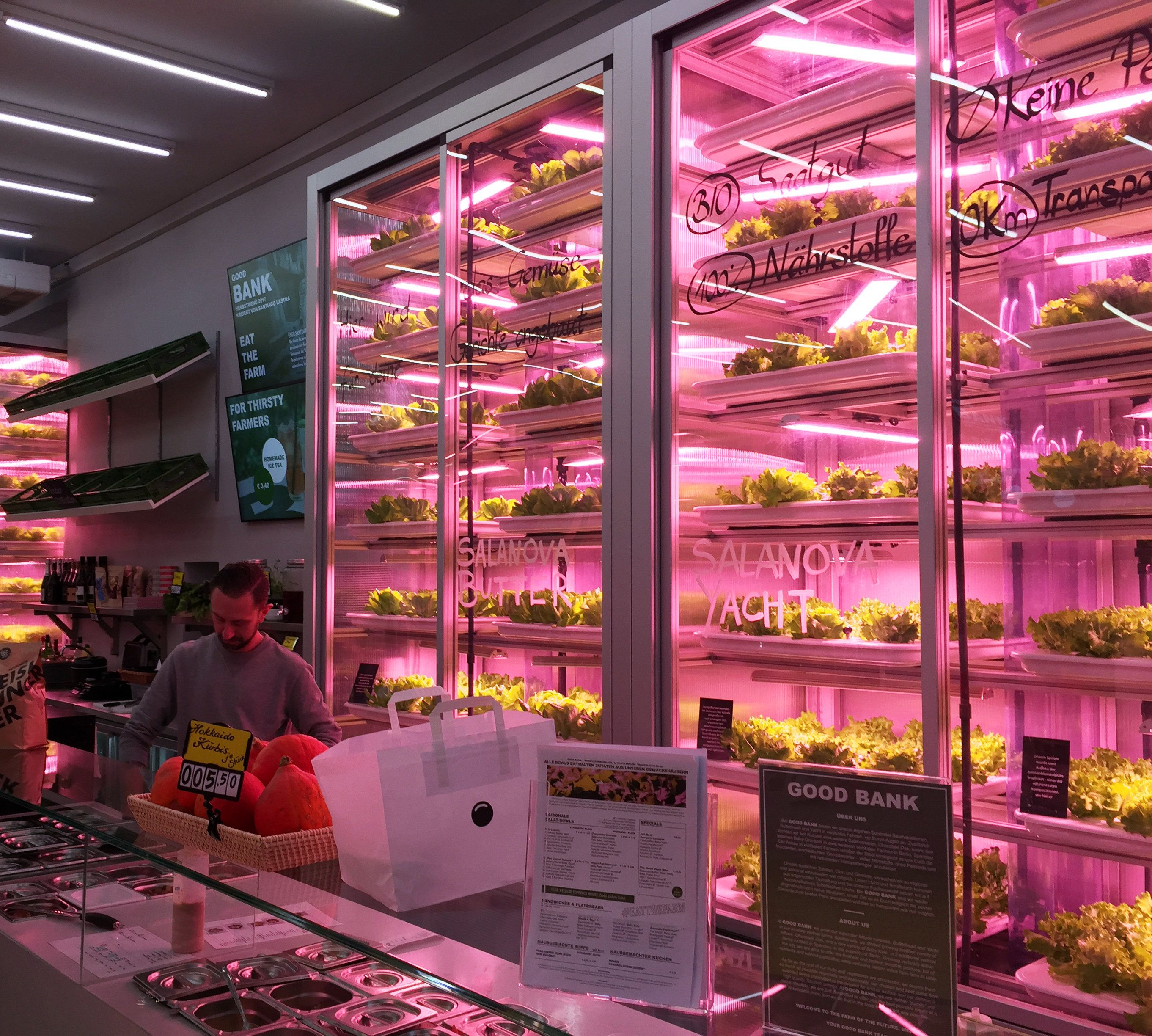 Good Bank vertical farm restaurant Berlin. Photo: Lexis ...