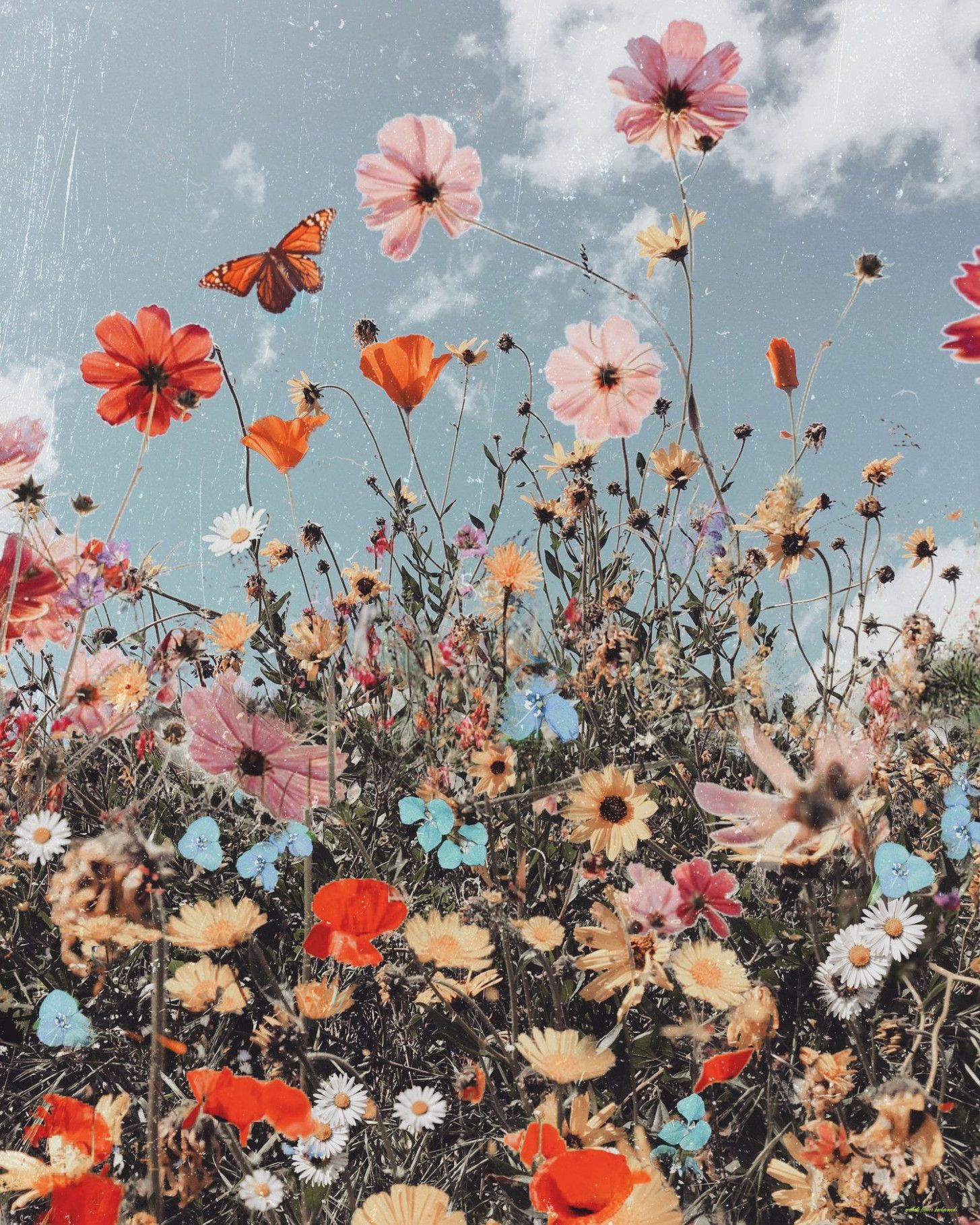 Join now to share and explore tons of collections of awesome wallpapers. How Will Aesthetic Flower Backgrounds Be In The Future ...