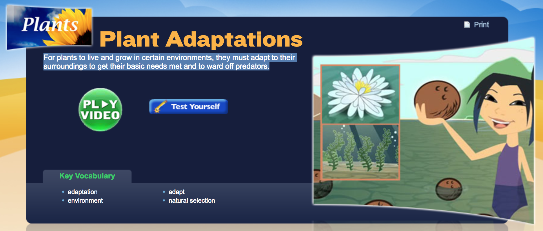 A Free Video And Quiz On Plant Adaptation Appropriate For