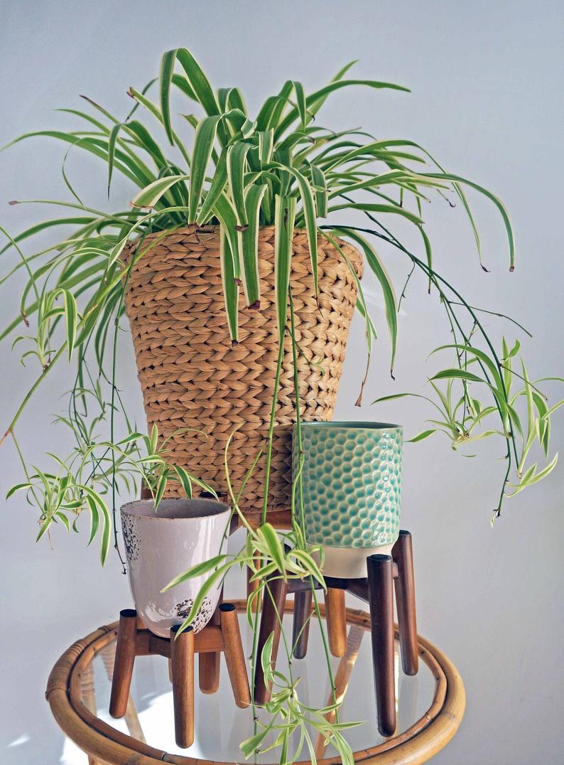 Vintage Wooden Plant Stand Indoor Minimalist Tall Plant 400 x 300