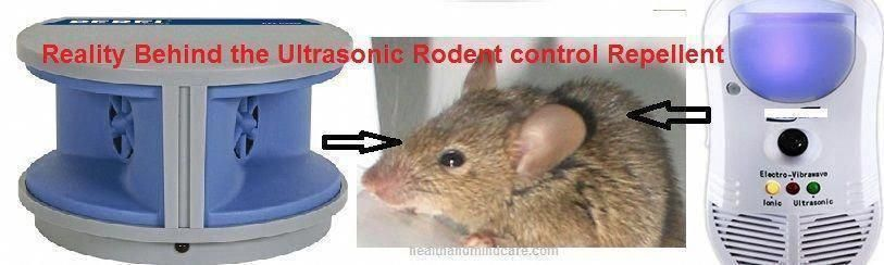 Mice, Rat, Rodent Repeller - safety, effectiveness, Working