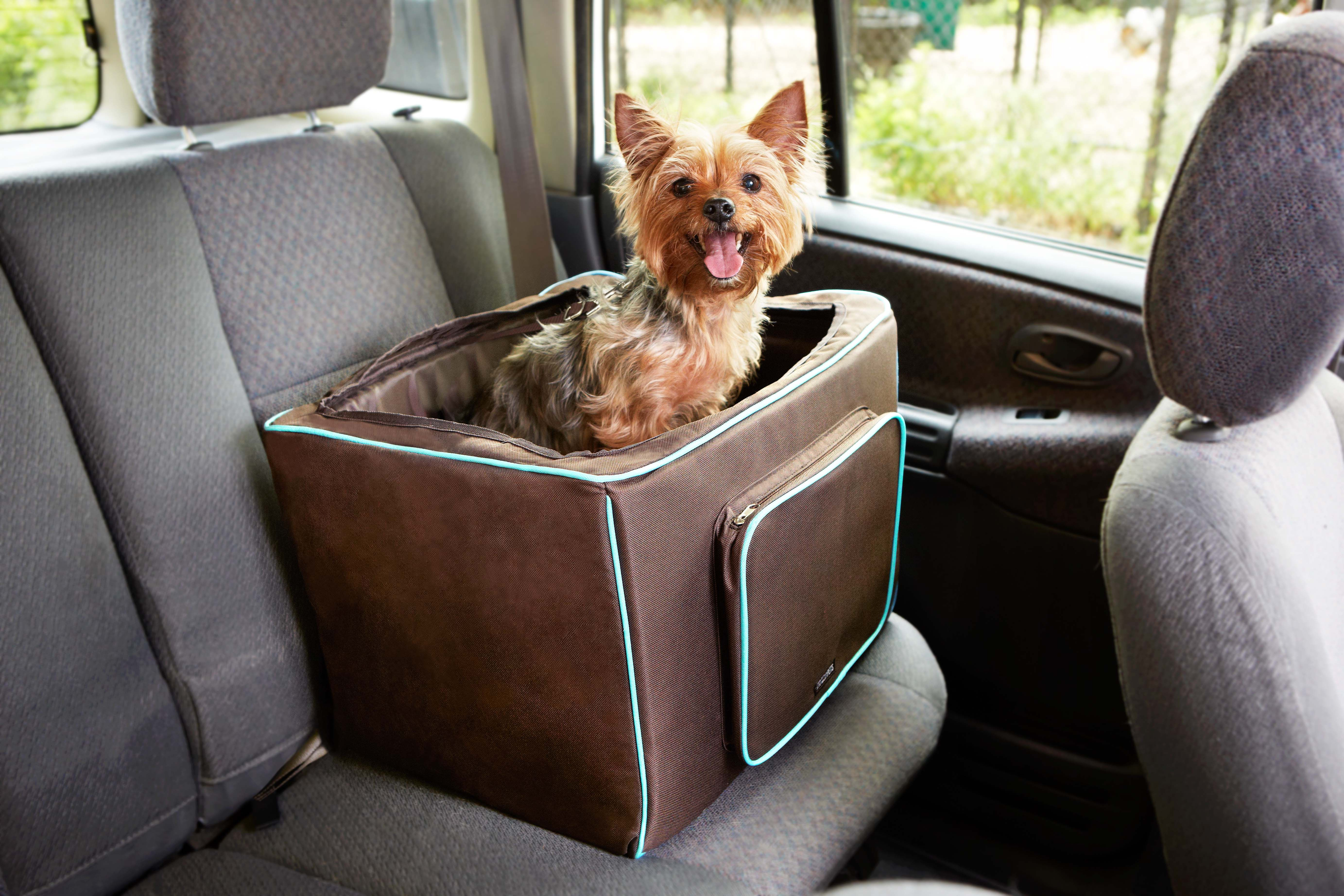 Planning A Summer Road Trip Travel Safely With The Martha Stewart Pets Booster Seat For Dogs Marthastewartpets Petsmart Pets Pet Dogs Martha Stewart Pets