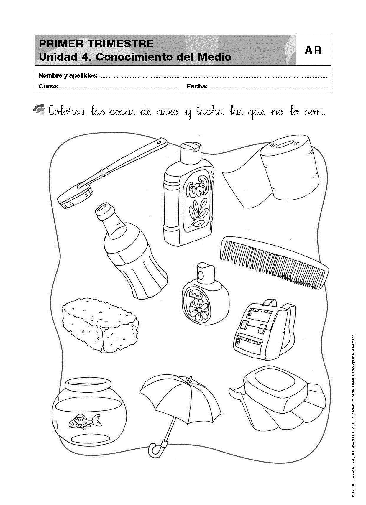 Resultado de imagen para actividades de ciencias naturales for Como crecen los arboles para ninos