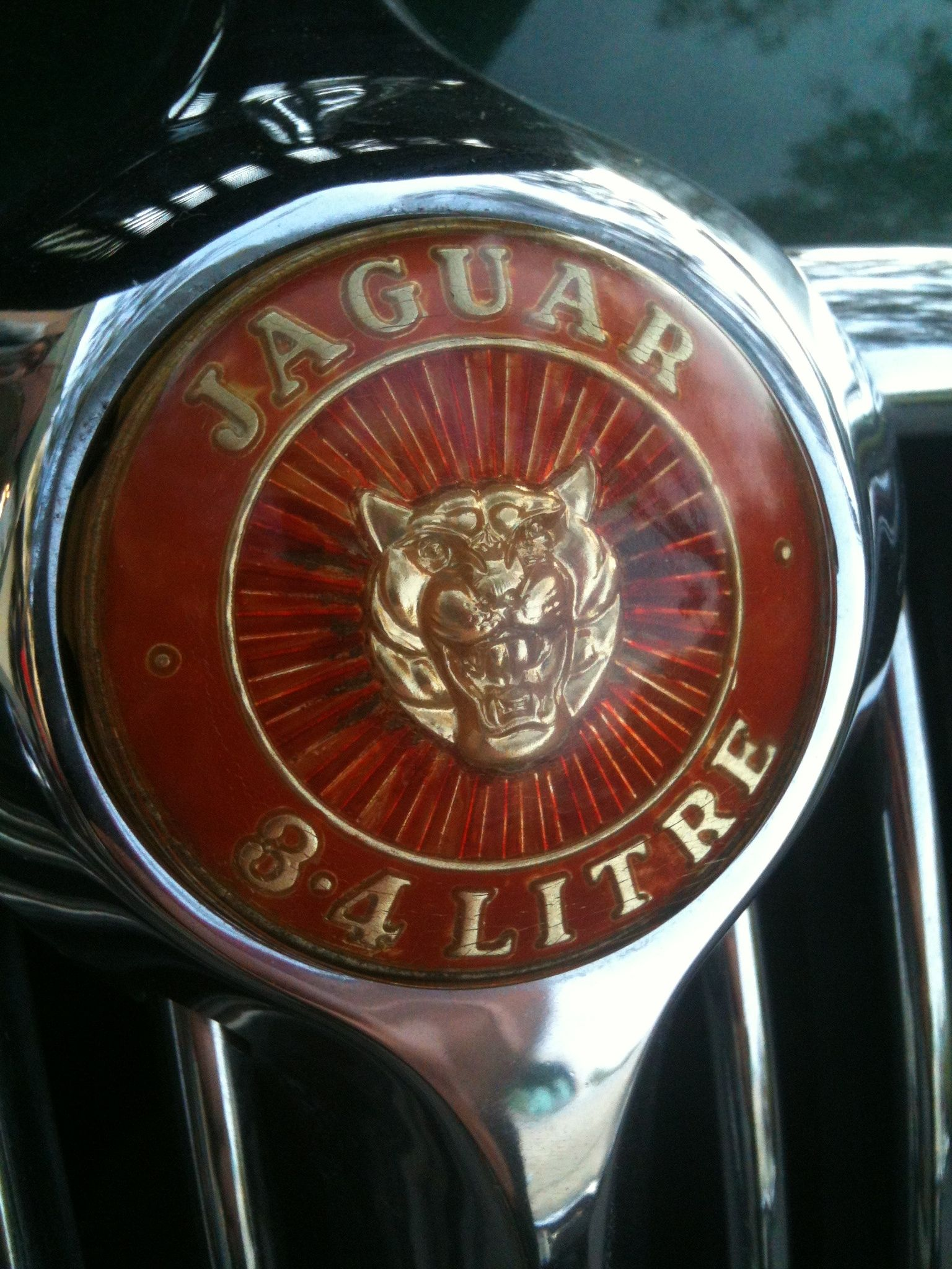Jaguar Pinought To You By Houseofinsurance For