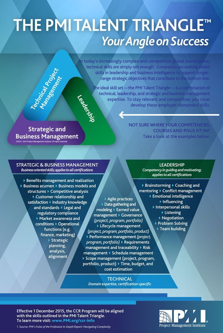 Management  NEW PMI Talent TriangleTM Skill Examples  Management