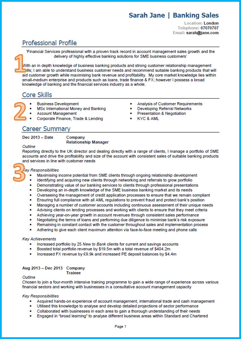Curriculum Vitae Writing Examples