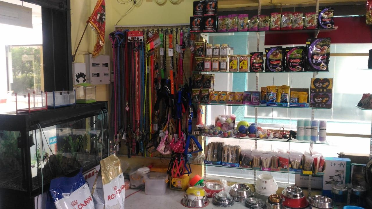 Pet Foods From The No1 Pet Shop In Haldia Animel Planet Buy Pet Foods And Accessories For Your Pets From The Best Pe Pet Food Store Dog Food Recipes Buy Pets