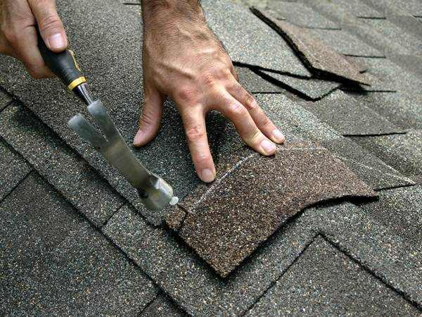 Galvanized Roofing Nails With Umbrella Head In 2020 Roof Repair Roof Cost Roof Shingles