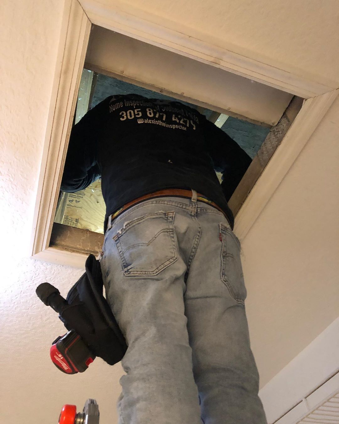 Every attic needs to be inspected call us for your next