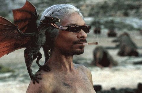 Snoop dragon