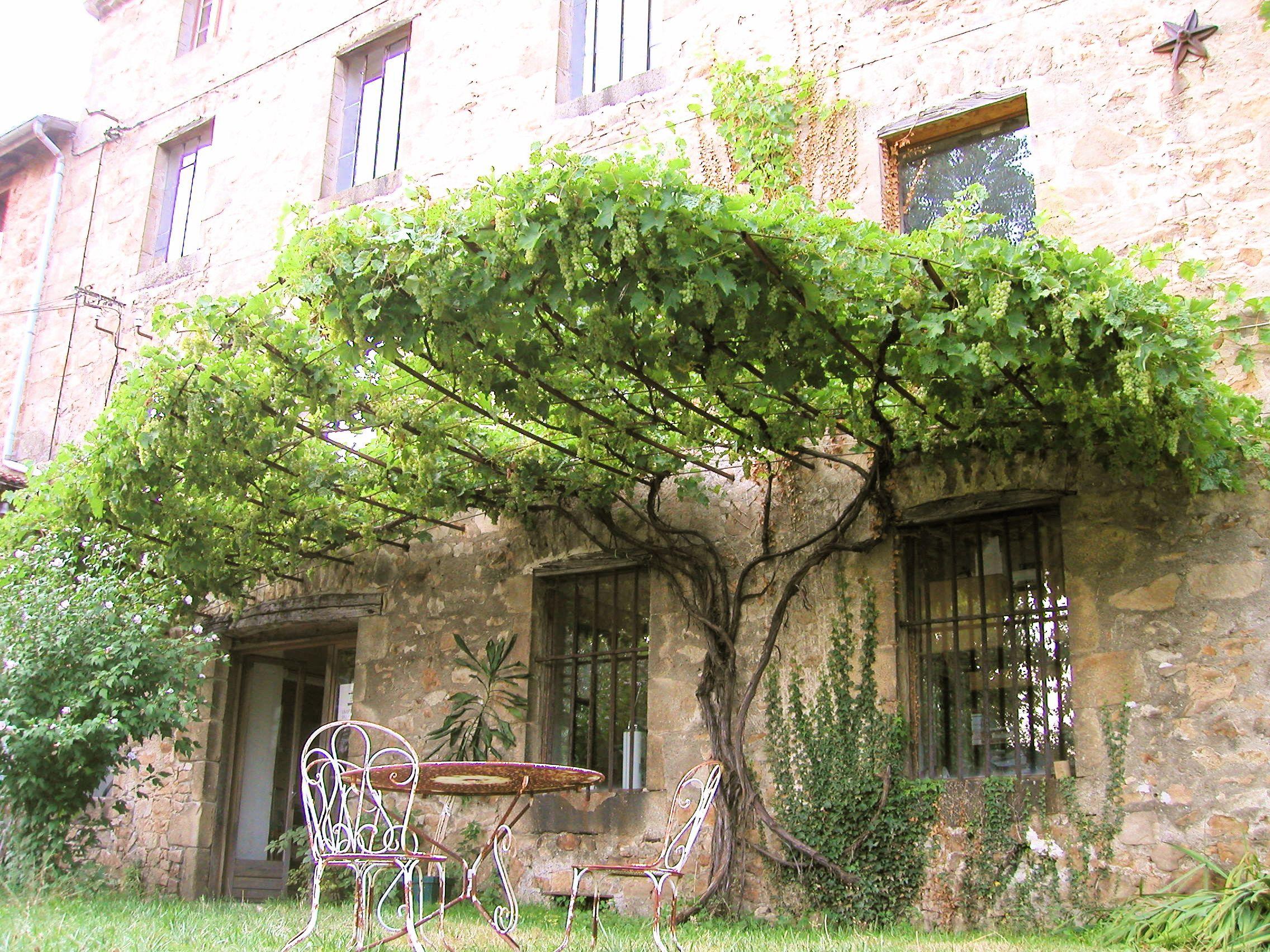 Sculptures v g talis es francis beninca tonnelle pergola for Plante jardin ombre