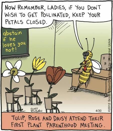punishment important in plant pollinator relationship tips