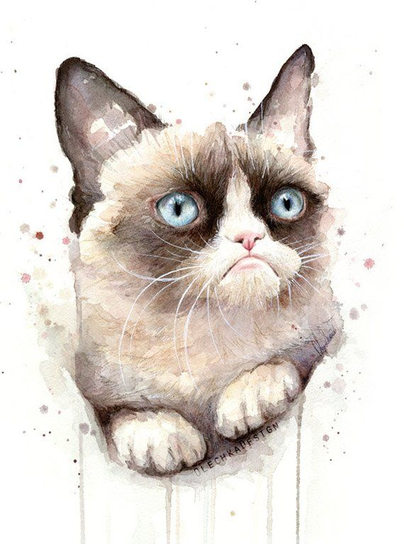 Grumpy Cat Watercolor Art Print Cat Painting Animal Portrait