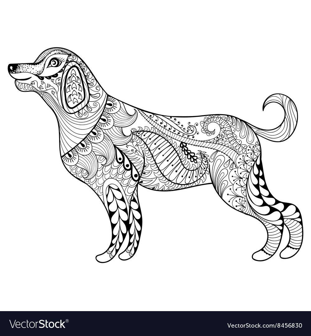 Pin On Super Dog