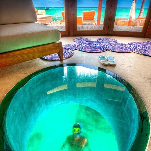 The Amazing Glass Floor Cabana At W Hotel Maldives By
