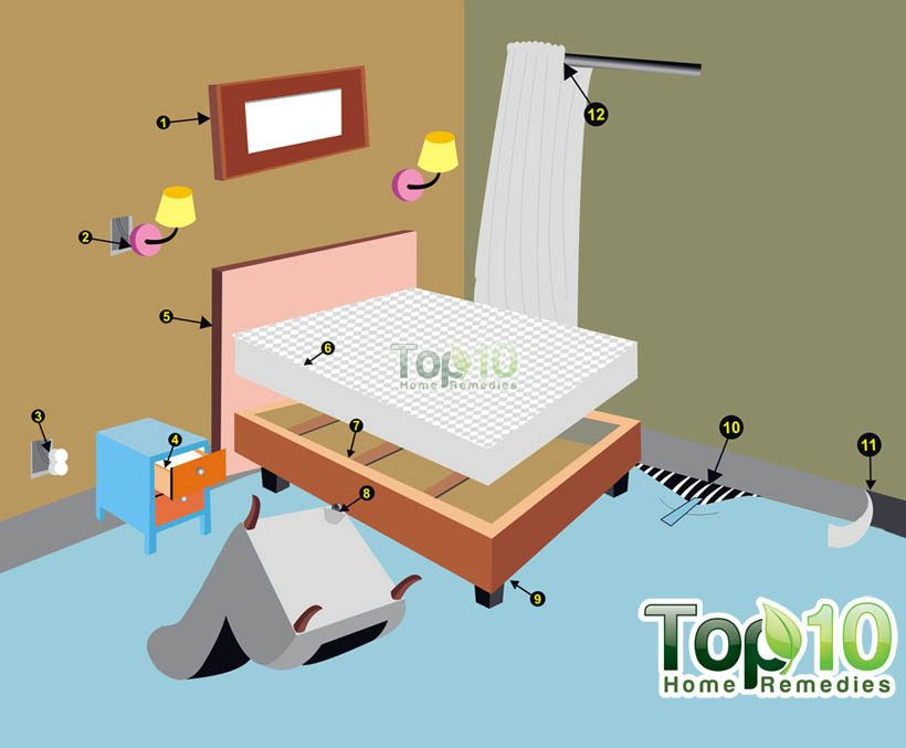 here s how to take control get rid of bed bugs from your house jasmine bed bugs rid of. Black Bedroom Furniture Sets. Home Design Ideas