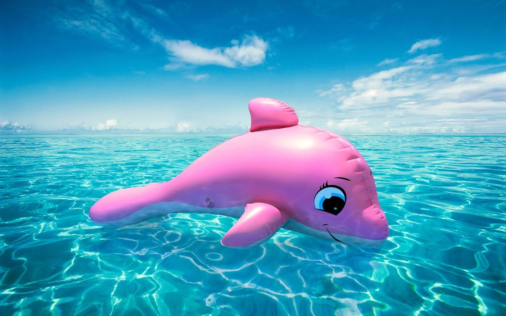 Pink Dolphins Google Search Pink Dolphin Wallpaper Pink Whale Kid Pool