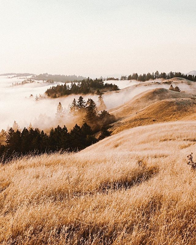 ✰ @annabellecolee #fallscenery