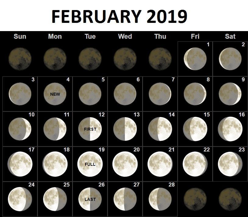 February 2019 Printable Moon Calendar February 2019 Moon Phases Calendar #february #february2019