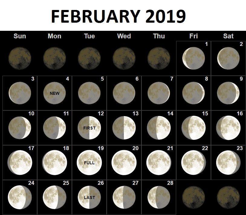 Moon Calendar Of February 2019 February 2019 Moon Phases Calendar #february #february2019