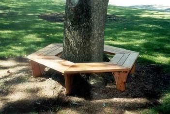 Wrap Around Tree Bench Unique Gifts Tree Bench Tree