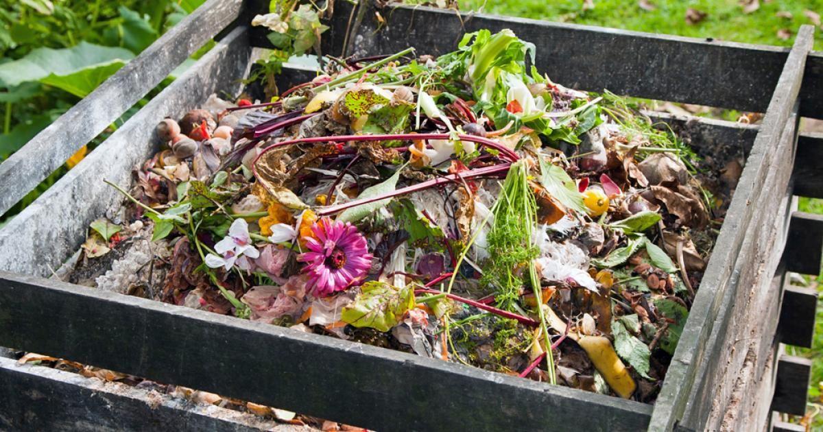 Kompost Im Garten Richtig Verwenden Garden Garten Pinterest