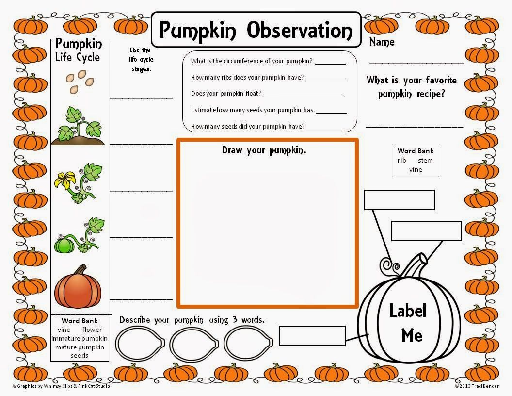 worksheet Parts Of A Pumpkin Worksheet pumpkin science printable circumference google search nature the bender bunch observation freebie