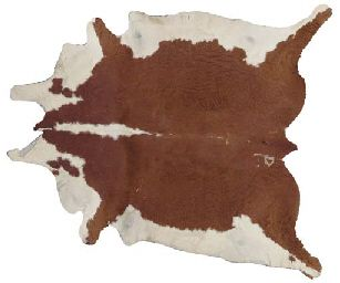 A Brown And White Pony Skin Rug