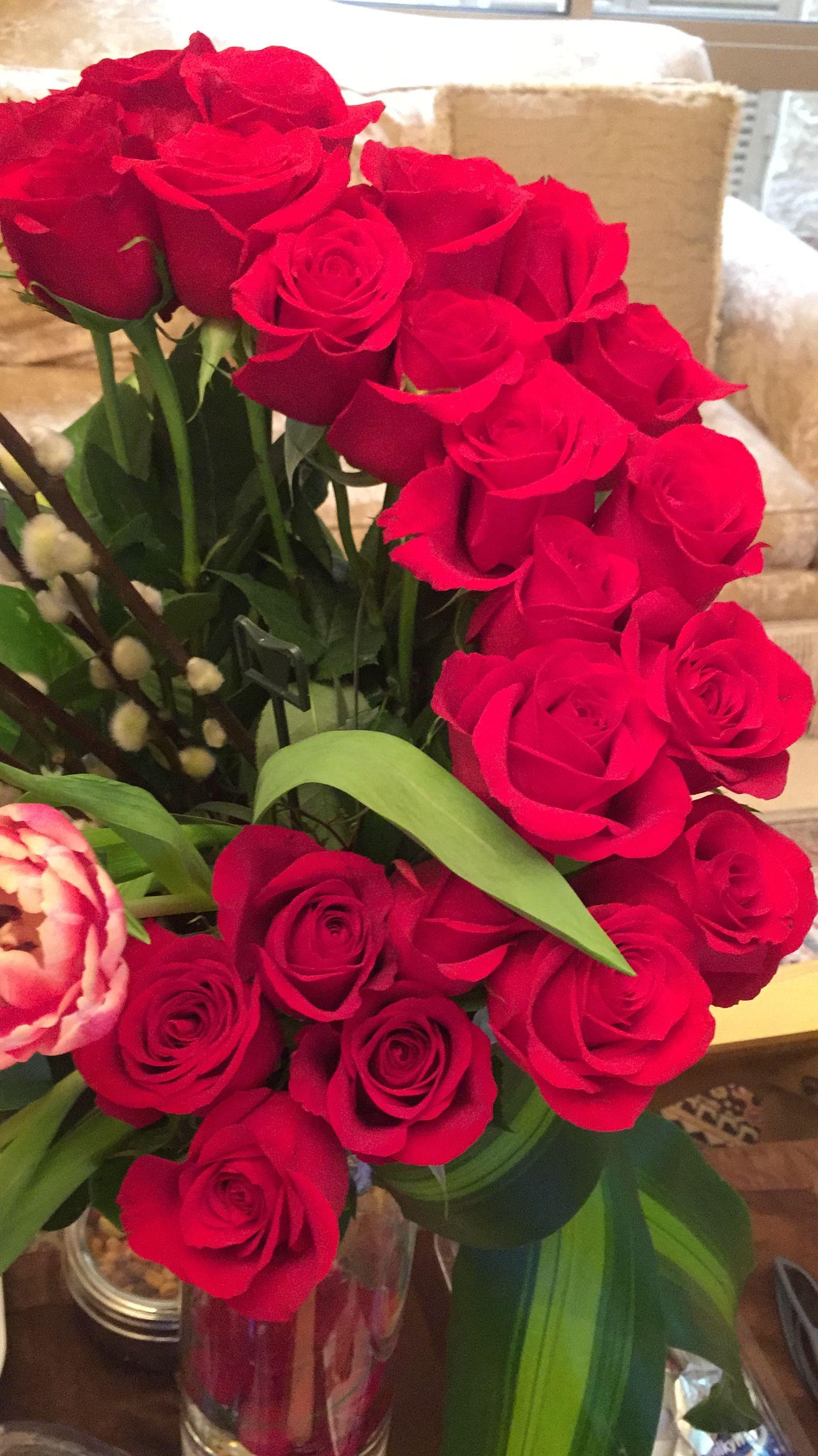 ورود الحب Rosas Vermelhas Rosa Do Deserto Rosas
