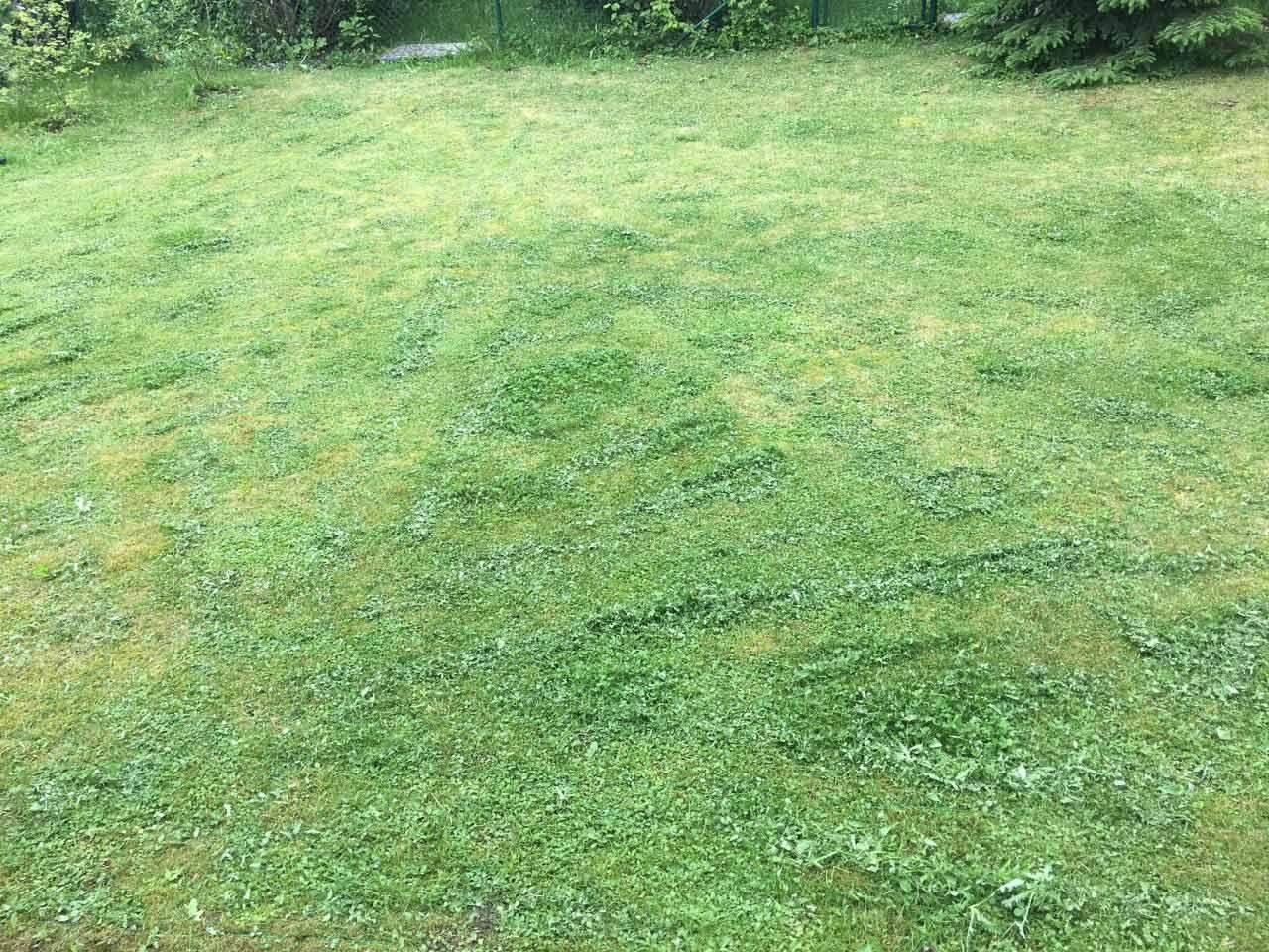 Pin Auf Garten Und Outdoor
