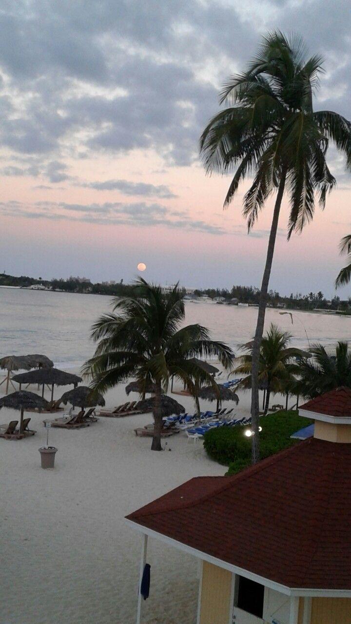 pinulrike hatashita on wanderlust bahamas  outdoor