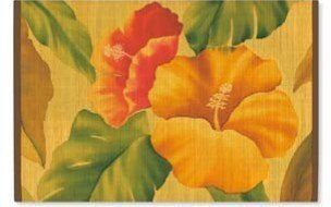 Hawaiian Bamboo Placemat Vintage Hibiscus by IH, http://www.amazon.com/dp/B0042890RU/ref=cm_sw_r_pi_dp_Z59Urb0N2QP70