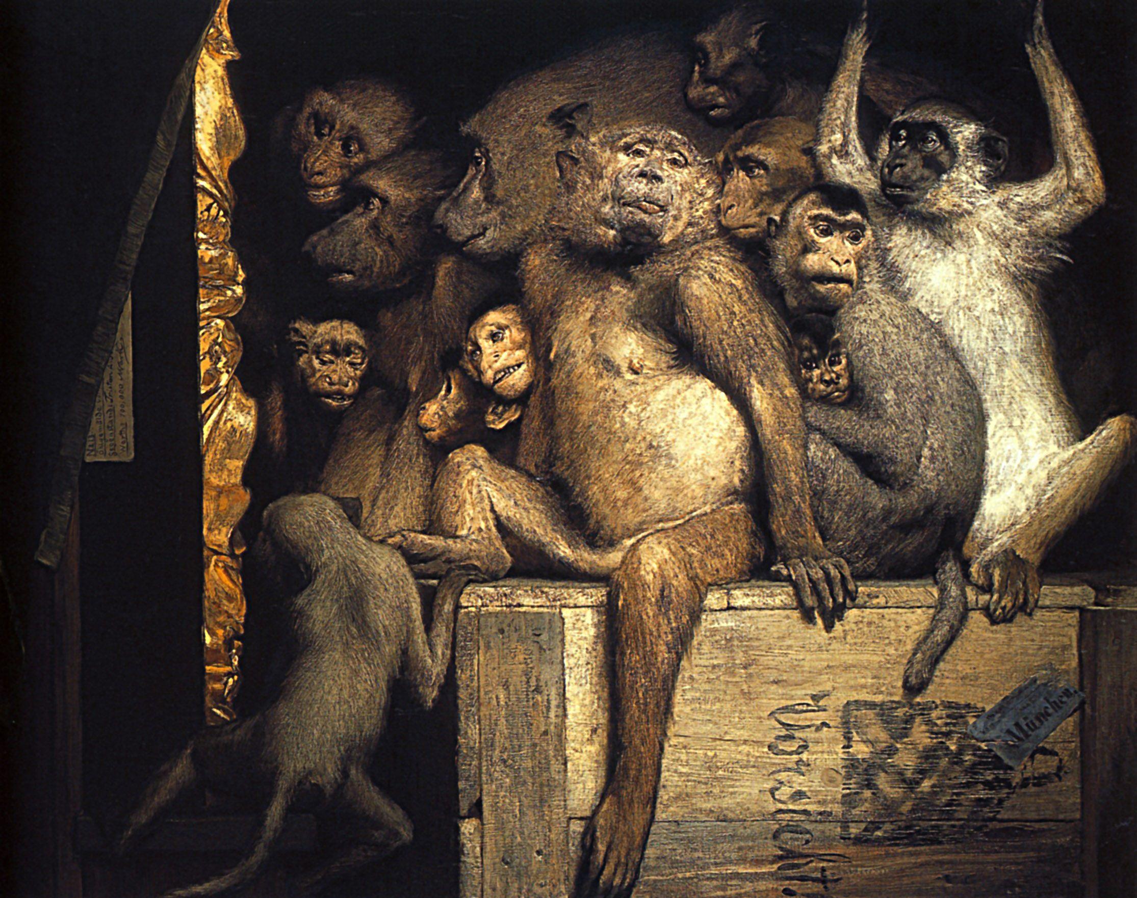 1890 1900 Gabriel Max Le Jury Des Singes Huile Sur Toile 85x107 Cm Munich  Bayerrische Staatsgemäldesammlungen