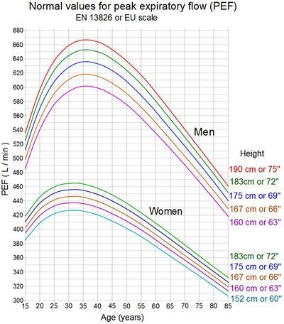 Peak Expiratory Flow Pef Graph  Biokinetics  Exercise Therapy