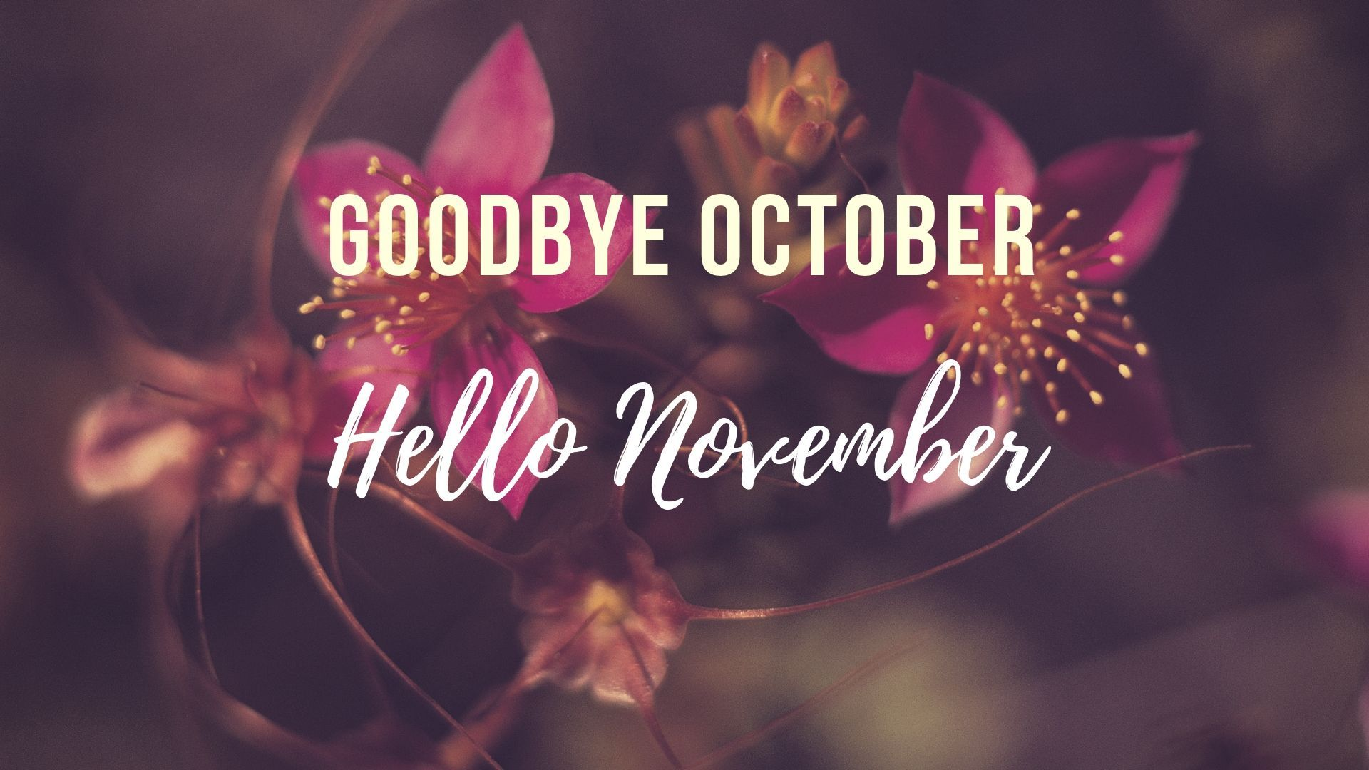 goodbye october hello november hd photo #hellonovemberwallpaper