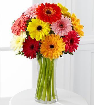 A Bouquet A Day Keeps The Doctor Away Sapphirebutterfly Gerberas Ramo De Margaritas Flores