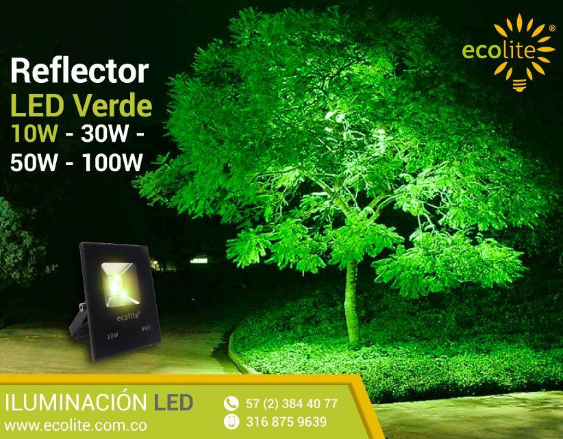 Reflectoras Led Color Verde Dispersa El Color Para Resaltar Los Detalles En La Decoración Reflectors