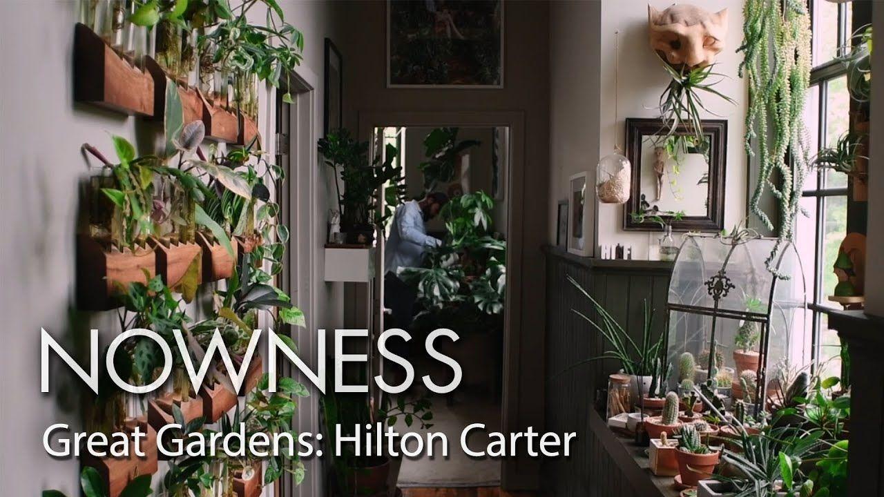 Carter Christmas 2020 Youtube Great Gardens: step into Hilton Carter's houseplant paradise