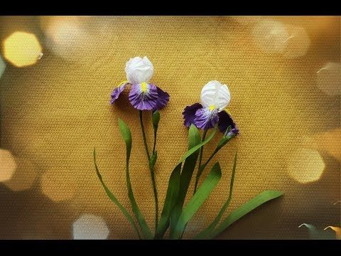 How To Make Iris Crepe Paper Flowers Flower Making Of Crepe Paper Paper Flower Tutorial Youtube Paper Flowers Craft Paper Flowers Diy Paper Flowers