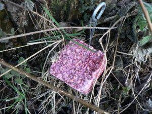 Söikö koirasi rotanmyrkkyä – Toimi näin  http://kuono.fi/soiko-koirasi-rotanmyrkkya-toimi-nain/