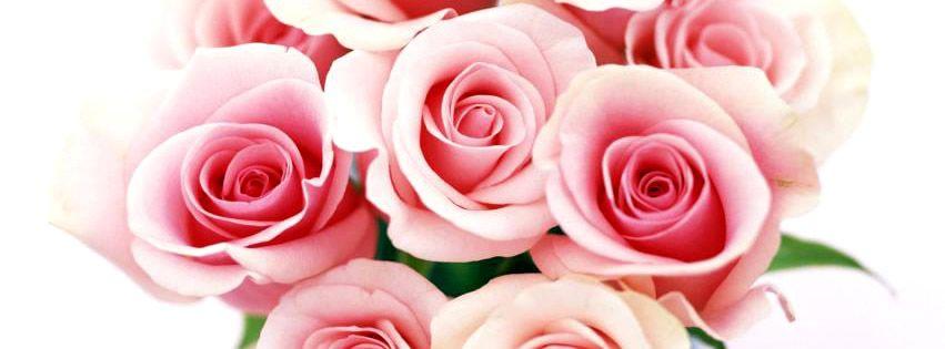 Couvertures Pour Facebook Facebook Couverture Pinterest Pink