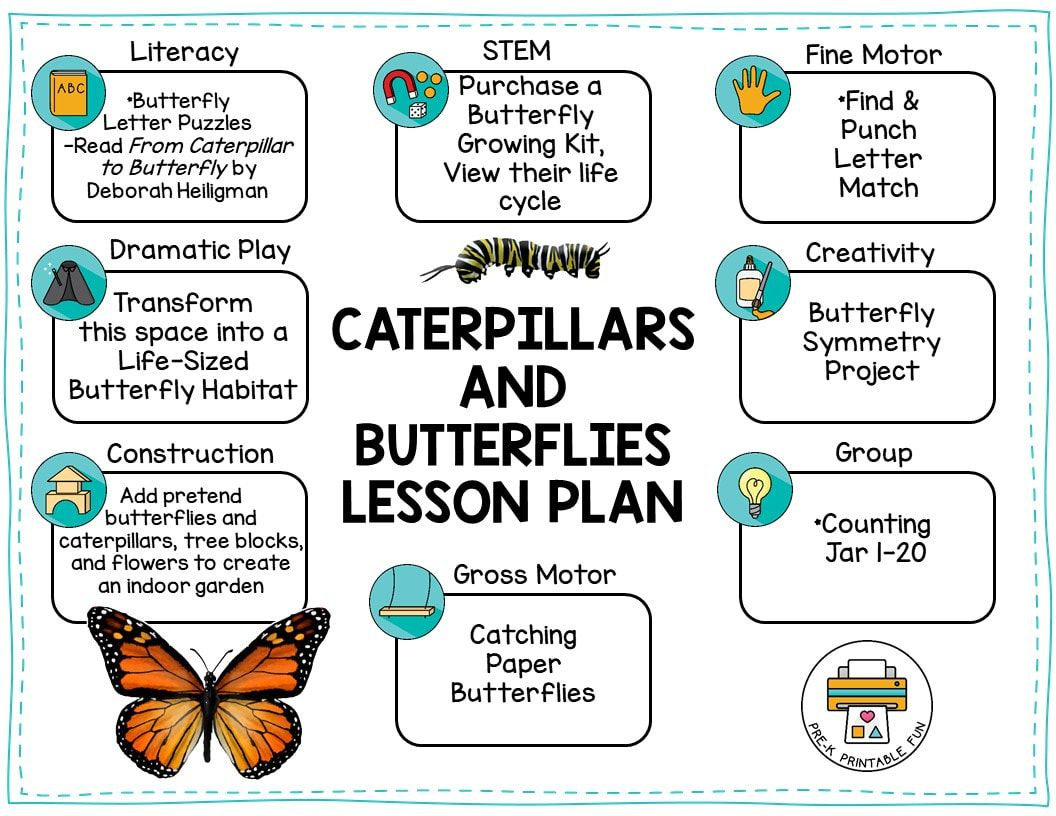 Caterpillar And Butterflies Preschool Activities Free