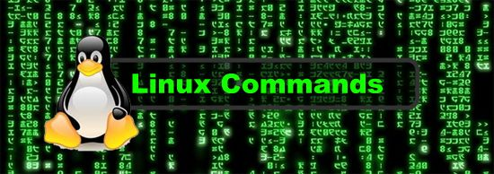 BEGINNER'S GUIDE FOR LINUX – Start Learning Linux in Minutes