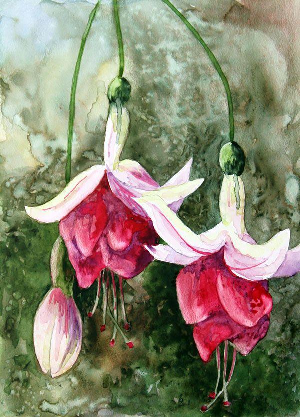 Fuchsias On Terraskin By Nancy Goldman Flower Art Painting Flower Art Floral Watercolor