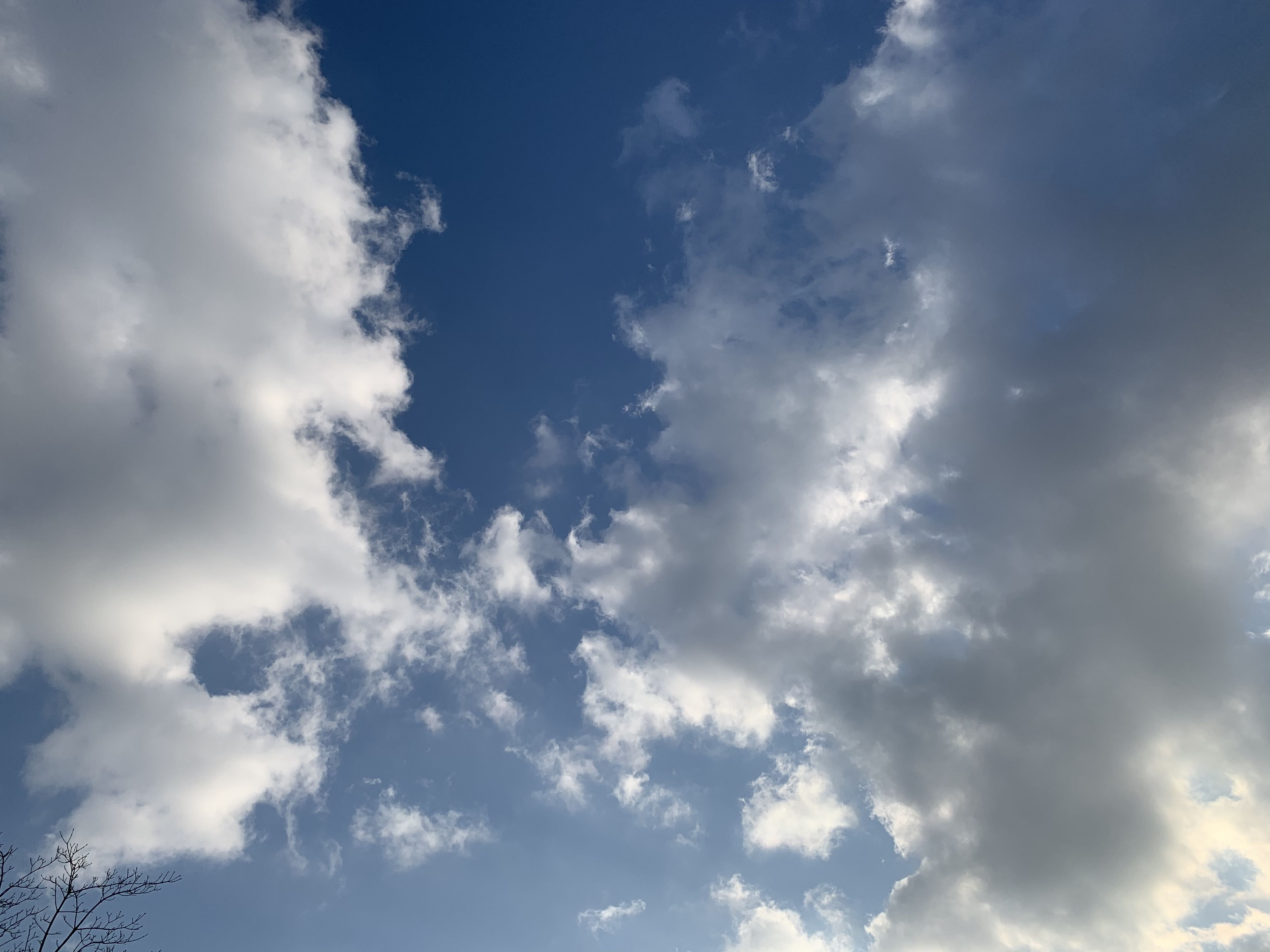 2019년 12월 2일의 하늘 sky clouds 하늘