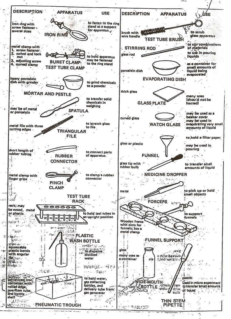 Printables Biology Laboratory Equipment Names Gozoneguide – Laboratory Equipment Worksheet