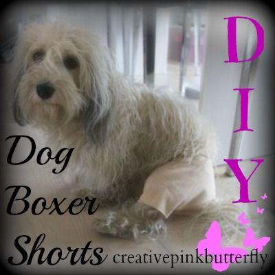 Diy Dog Boxer Shorts Diy Dog Stuff Boxer Dog Dog Pattern